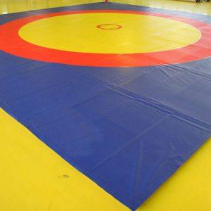 Area Oficial de Luchas Asociadas para competencias